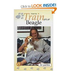 how-to-train-your-beagle_